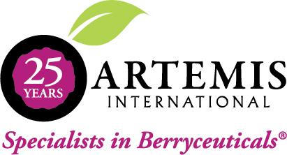 Artemis International Logo